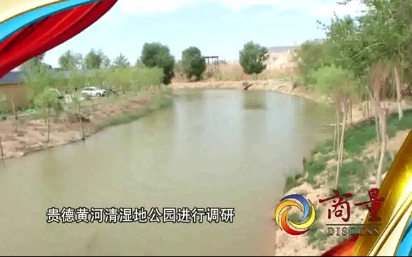 视频丨建设济南特色的黄河湿地公园有何妙招?