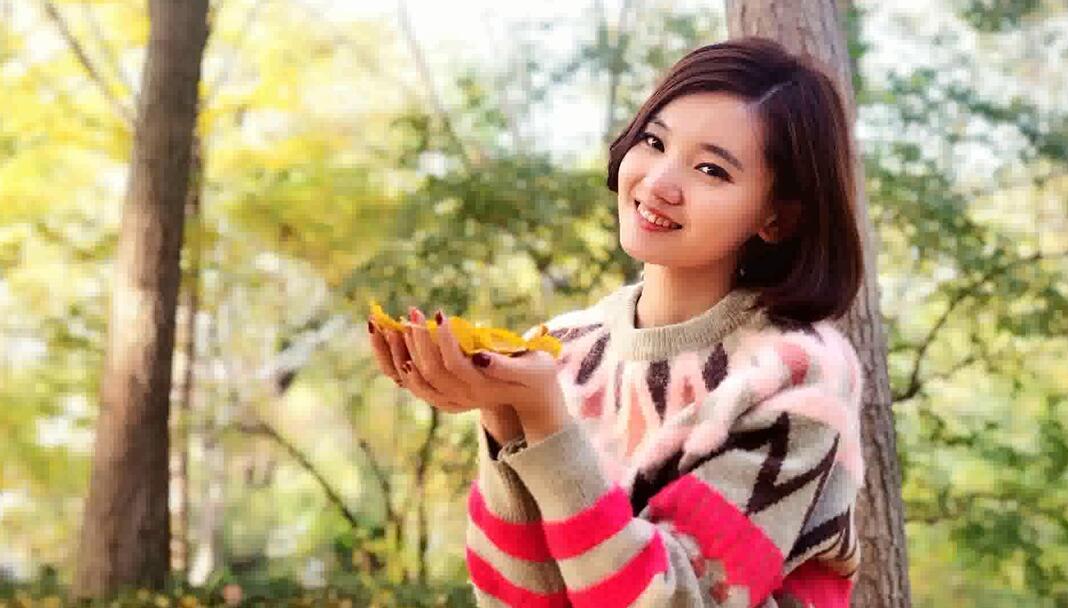 济南银杏林,用落叶拍出高级游客照