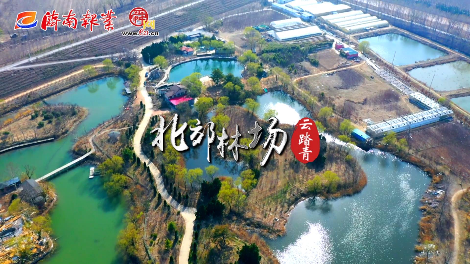 """3.12云踏青特辑   北郊林场邀您""""云""""植树"""